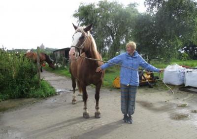 Pferd_u_Frauke
